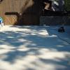 Concrete Driveway Restoration 3500 Square Feet Sparta, NC