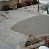 2500 Square Foot Pool Deck Restoration